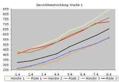 WurfbuchWoche1